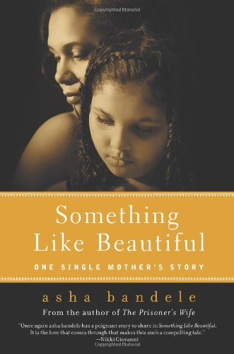 Something Like Beautiful: One Single Mother's Story