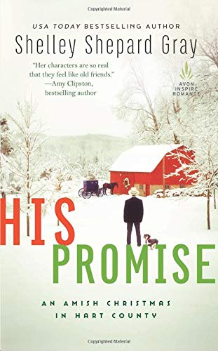 His Promise (Amish of Hart County)