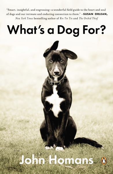 What's a Dog For