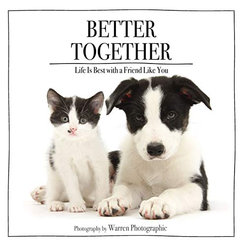 Better Together: Life Is Best with a Friend Like You