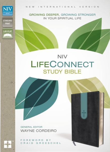 NIV Life Connect Study Bible (Gray/Blue Leathersoft)