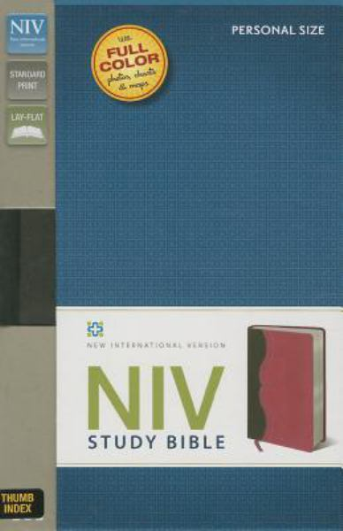 NIV Study Bible (Thumb Indexed, Charcoal/Pink Italian Duo-Tone)