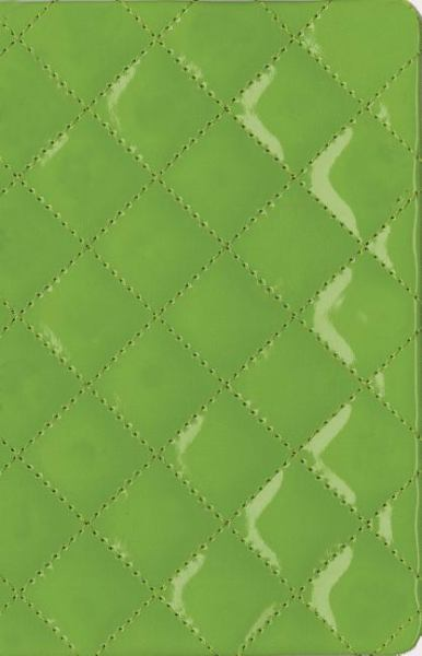 Thinline Quilted Collection Bible (NIV, Kiwi Italian Duo-Tone)