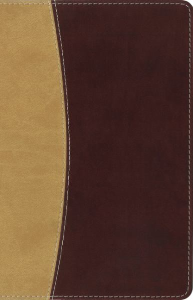 Amplified Holy Bible, Compact (Camel/Burgundy Italian Duo-Tone, Gilded Gold)