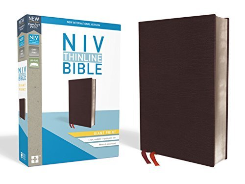NIV Giant Print Thinline Bible (Thumb Indexed, Burgundy Bonded Leather)