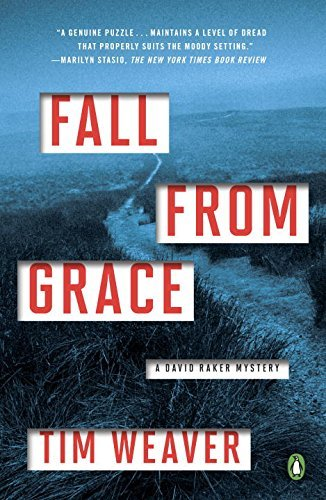 Fall from Grace (David Raker Mystery)