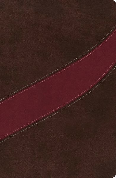 The MacArthur Study Bible (NASB, Thumb Indexed, NA673C - Cranberry/Earth Brown Leathersoft)