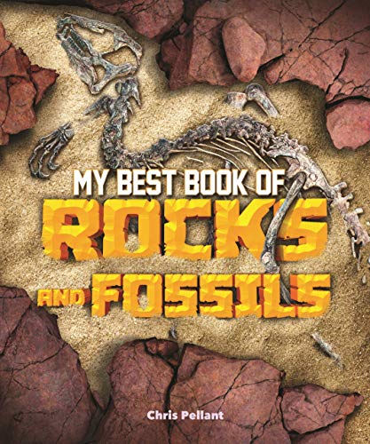 My Best Book of Rocks and Fossils (The Best Book of)