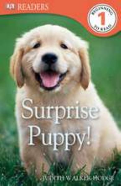 Surprise Puppy! (DK Readers, Beginning to Read, L:evel 1)