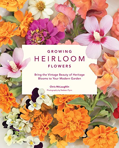 Growing Heirloom Flowers