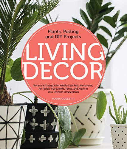 Living Decor