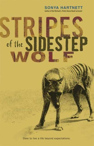 Stripes Of The Sidestep Wolf