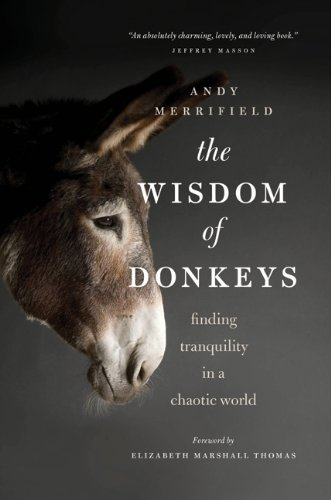 The Wisdom of Donkeys: Finding Tranquility in a Chaotic World