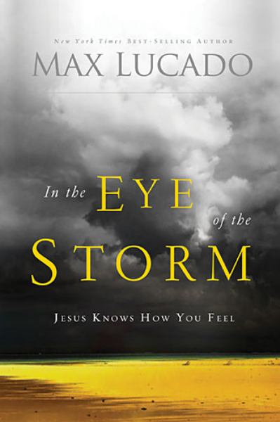 In the Eye of the Storm (Jesus Knows How You Feel)