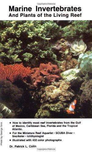 Marine Invertebrates and Plants of the Living Reef