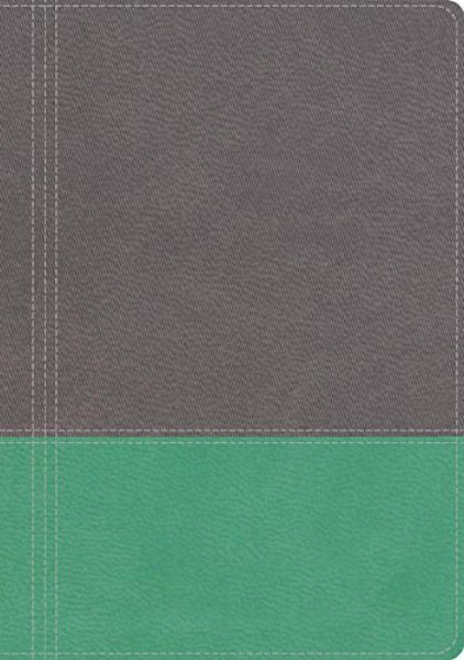 The NKJV Modern Life Study Bible (4263A - Dove Gray/Lagoon Green Leathersoft)