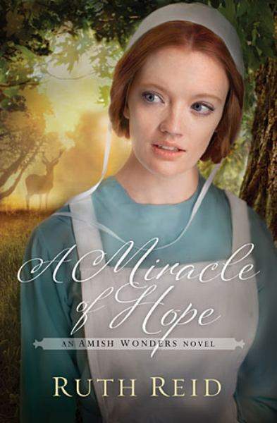 A Miracle of Hope (Amish Wonders Series)