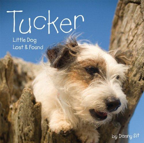 Tucker: Little Dog Lost & Found