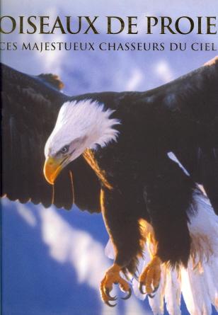Oiseaux De Proie: Ces Majestueux Chasseurs Du Ciel