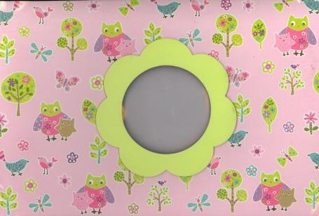 Jenny/Jeff Baby Scrapbook Kit (Pink)