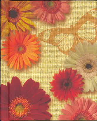 Pocket Pictures - Daisies