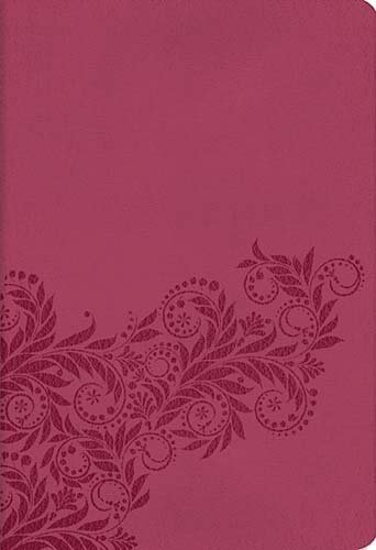 Nelson Reference Bible (3003A- Light Cranberry Leathersoft Bible/NKJV/Reference/Silver Gilded Pages)