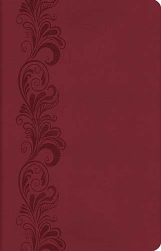 Personal Size Giant Print Reference Bible, KJV (Classic Series/ 0543BG- Burgundy Leathersoft Bibles/ KJV/ Reference/ Giant Print Reference Edition)