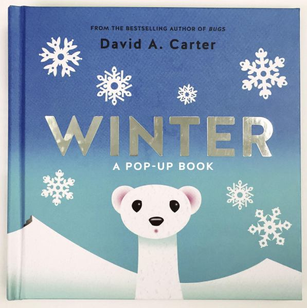 Winter: A Pop-up Book