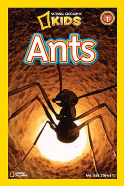 Ants (National Geographic Kids Level 1)