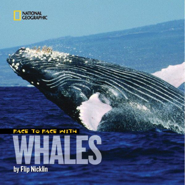 Face To Face With Whales (National Geographic)