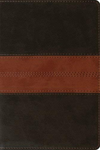 ESV Personal Reference Bible (TruTone, Deep Brown/Tan, Trail Design)