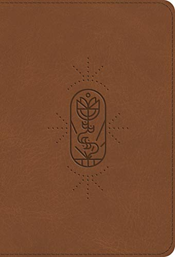ESV Compact Kid's Bible (TruTone The True Vine)