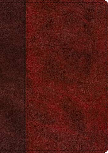ESV Single Column Journaling Bible (Large Print,TruTone Burgundy/Red, Timeless Design)