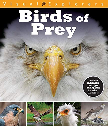 Birds of Prey (Visual Explorers Series)