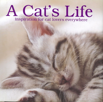 A Cat's Life: Inspiration for Cat Lover Everywhere