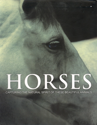 Horses: Capturing the Natural Spirit of These Beautiful Animals