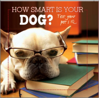 How Smart Is Your Dog? Test Your Pet's IQ