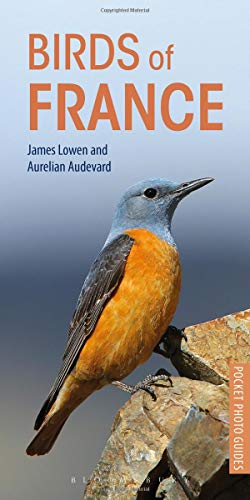 Birds of France (Pocket Photo Guides)