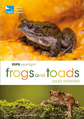 Frogs and Toads (RSPB Spotlight)