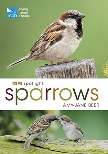 Sparrows (RSPB Spotlight)