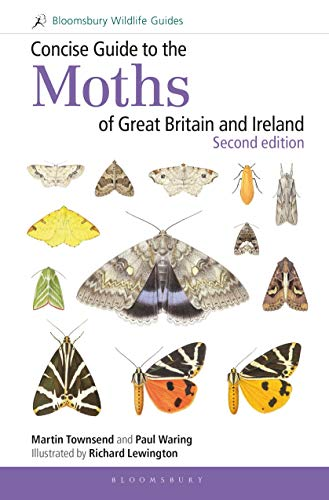 Concise Guide to the Moths of Great Britain and Ireland (Second Edition)