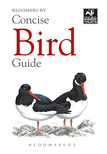 Concise Bird Guide (The Wildlife Trusts)