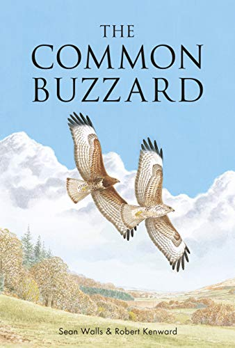 The Common Buzzard (Poyser Monographs)