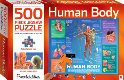 Human Body: 500 Piece Jigsaw Puzzle (Puzzlebilities)