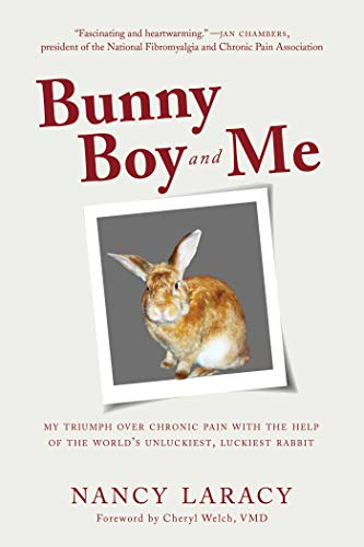 Bunny Boy and Me: My Triumph over Chronic Pain with the Help of the World's Unluckiest, Luckiest Rabbit