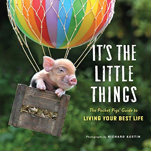 It's the Little Things: The Pocket Pigs' Guide to Living Your Best Life