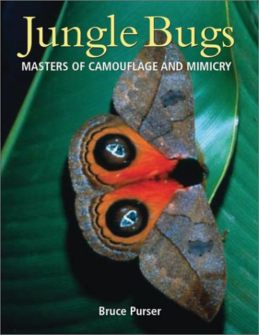 Jungle Bugs