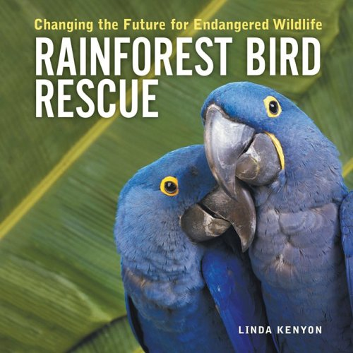 Rainforest Bird Rescue: Changing The Future For Endangered Wildlife (Animal Rescue Series)