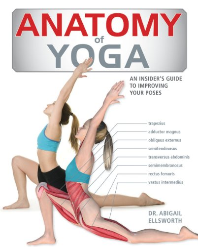 Anatomy of Yoga