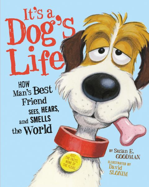 It's a Dog's Life: How Man's Best Friend Sees, Hears and Smells the World